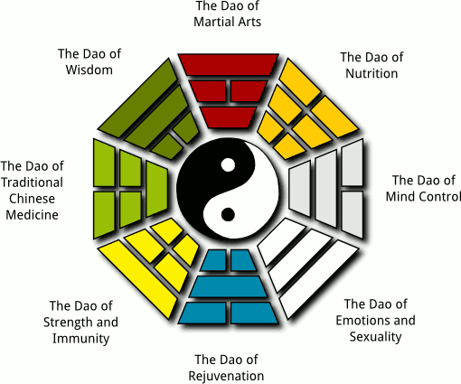 8-forces-training-system-bagua