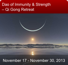 Dao of Immunity & Strength – Qi Gong Retreat